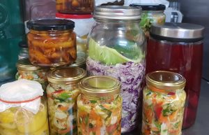 Fermented Foods, a very brief outline